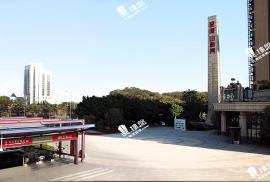 星河山海灣|香港高鐵1小時直達|地鐵在家門|背山面海 (實景航拍)